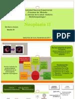 Seminario Neoplasia II-1
