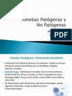 Practica 2 Amebas