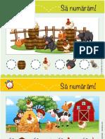 SA-NUMARAM.FERMA_.pdf