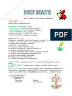 0 Proiect Activitate Matematica