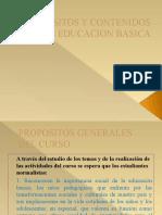 Propositos y Contenidos Presentacion