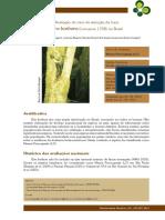 386-1666-1-PB.pdf