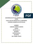 GEOFISICA - TRABAJO FINAL..docx