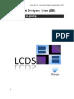 Manual LCDs v23 PDF