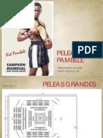 peleas-pambelé-low
