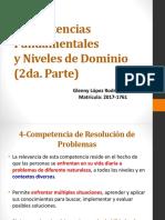 Competencias fundamentales y niveles de dominio