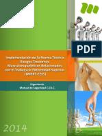 Manual de Implementacion Protocolo Trabajo Repetitivo (Tmert)