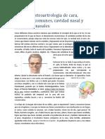 5_1 Osteoartrología de Cara, Cavidades Comunes, Cavidad Nasal y Senos Paranasales (Carta)