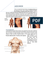 9_1 Pared Abdominal (Carta)
