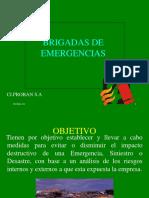 capacitacindebrigadasdeemergencias-110817213322-phpapp01.ppt
