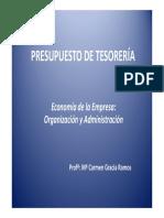 PRESUPUESTO TESORERIA.pdf