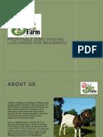 Dv Boer Farm Presentation