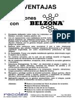 10 Ventajas de Belzona