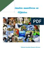 Los animales mamíferos en México