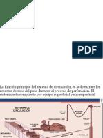 Sistema de Circulacion de Lodos  Hidraulica 1