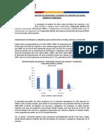 Bloques y adoquines en Venezuela.pdf