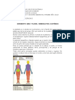 Planos Anatomicos.doc