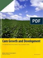 Corn Growth and Development001