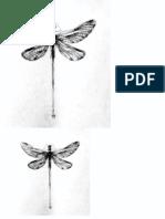 libelula.pdf