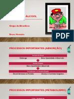 Apresentação Grupo de Alcoolicos Centro.pptx