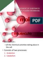 263774898 3 1 the Movement of Substances Across the Plasma Membrane