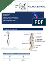 Sxmedulares.pdf