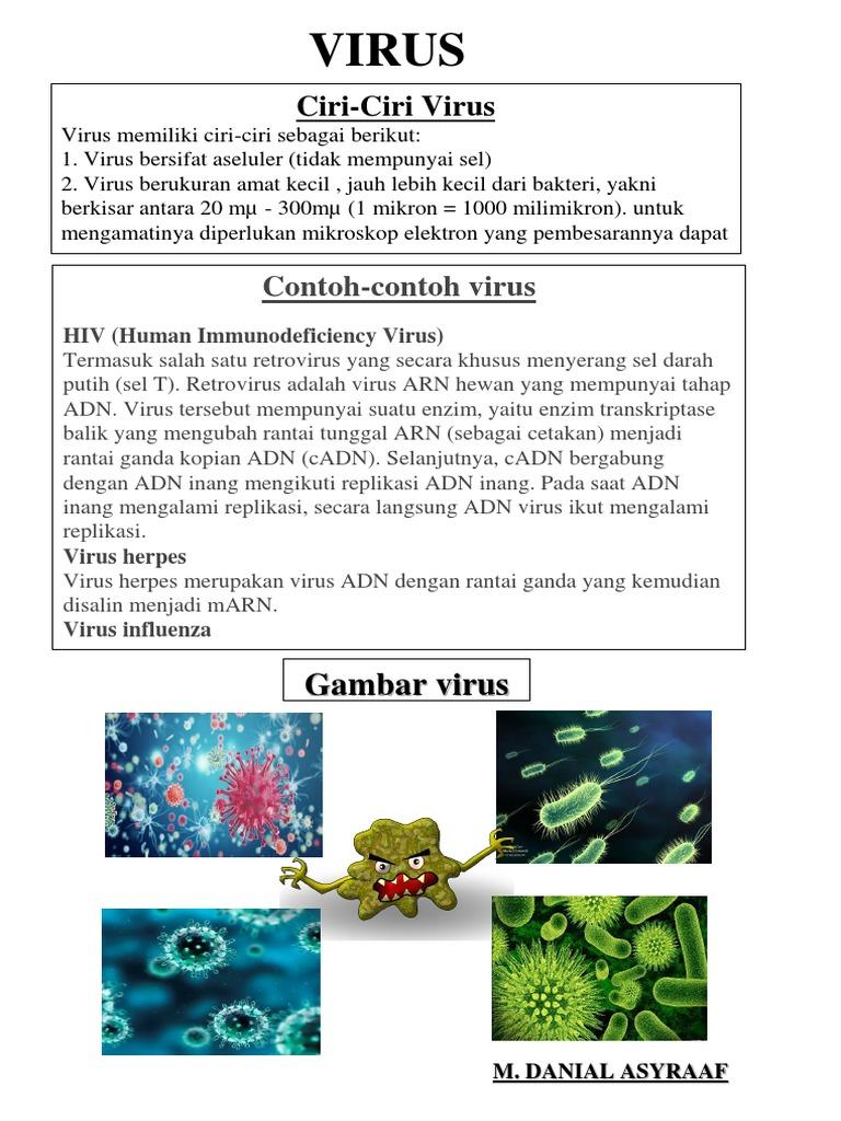 Mathcacth Sains Virus
