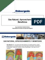 Gas Natural, Aprovechamiento y Beneficios1