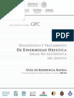 Esteatosis Hepatica