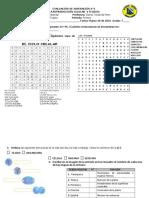 Evaluación Superación N°1 Primer periodo