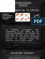 Diapositivas Bellas de La Fisiologia de La Célula