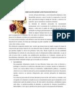Conservacion Quimica de La Pulpa