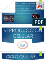 Reproducción y Metabolismo Celular FINAL