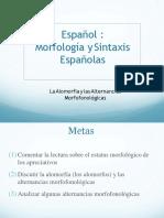 Morfologia Doc