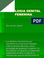 Fisiologia Genital Femenina - Modificado