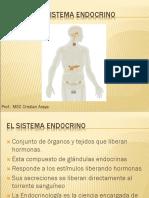 El Sistema Endocrino2
