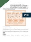 2. Sistemas de Prevención y Protección de Riesgos.