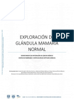 1.Exploracion de Glandula Mamaria Normal
