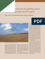 vantagens do uso palhiço para queima e produção vapor  - revista Ripoli.pdf