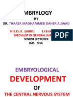 Embryology Developmentofcentralnervoussystem 100708132545 Phpapp02