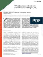 WAVE2 artcile.pdf