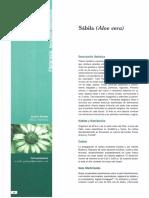 Dialnet-SabilaAloeVera-4956300.pdf