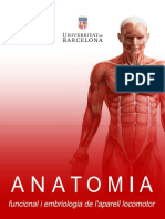 Anatomia - Anònim