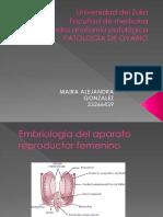 PATOLOGIA DE OVARIO.pptx