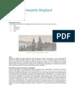 shares.pdf