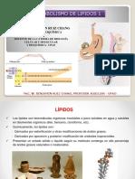 Lipidos_1[1].pptx
