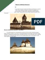 JUliana Fabritius-Dancu - Biserica Fortificata Din Homorod