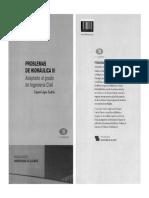 Problemas de Hidráulica. Volumen III.pdf
