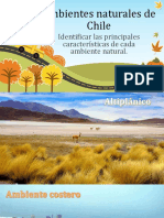 Ambientes Naturales de Chile