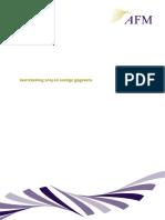 AFM annual report 2013